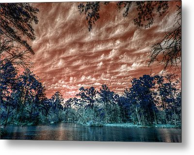 The Day After... Metal Print by Linda Unger