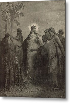 The Disciples Plucking Corn On The Sabbath Metal Print by Antique Engravings