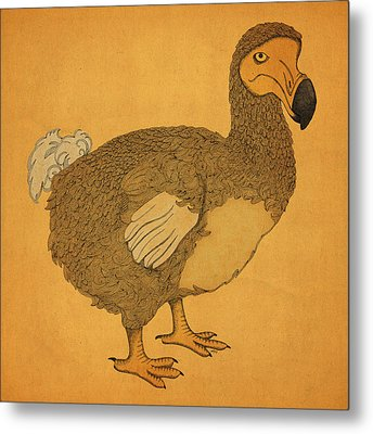 The Dodo Metal Print by Meg Shearer