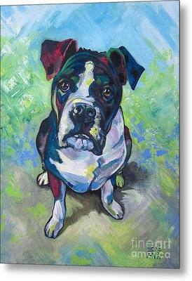 The Dog Metal Print by Ellen Marcus