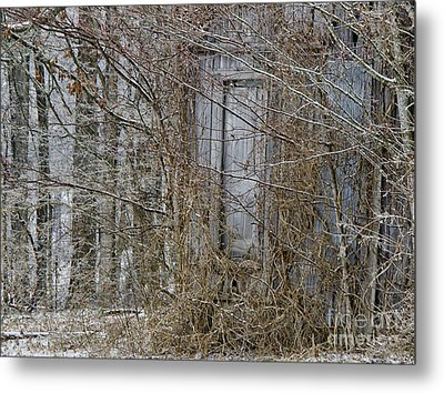 The Door To The Past Metal Print by Wilma  Birdwell
