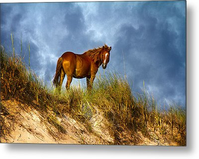 The Dune King Metal Print by Betsy Knapp