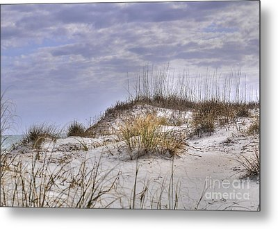 The Dunes At Huntington Beach State Park Metal Print by Kathy Baccari