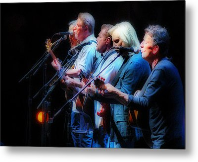 The Eagles Inline Metal Print by Alice Gipson