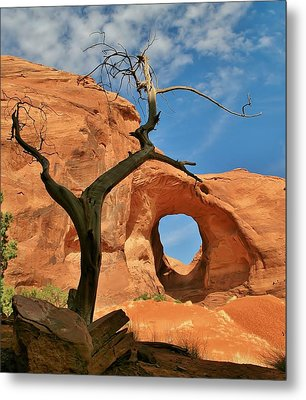 The Ear Of The Wind 2 Metal Print by Mo Barton