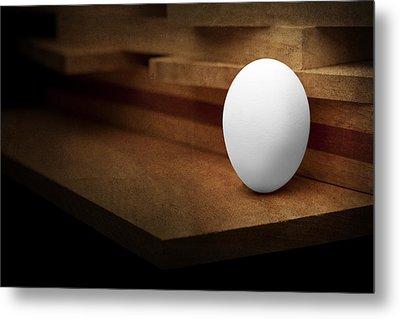 The Egg Metal Print by Tom Mc Nemar