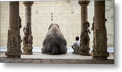The Elephant & Its Mahot Metal Print by Ruhan