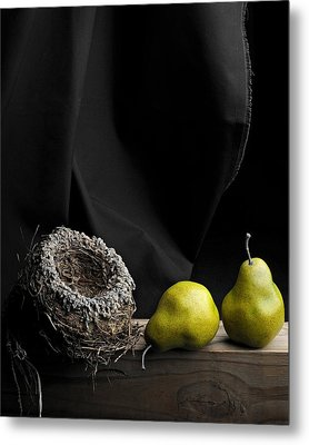 Metal Print featuring the photograph The Empty Nest by Krasimir Tolev
