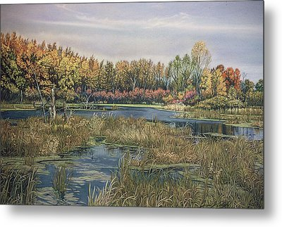 The Endangered Wetlands No. 4 Metal Print by James Welch