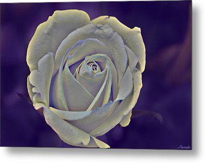 The Ethereal Rose  Metal Print