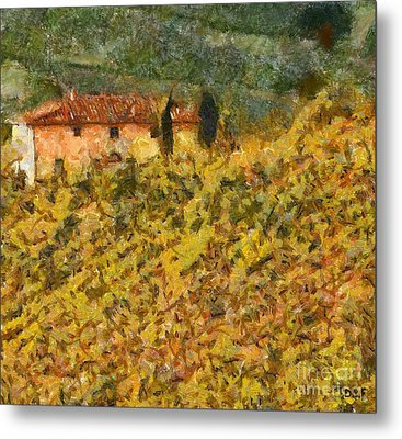 The Evening Before Grape Harvest Metal Print