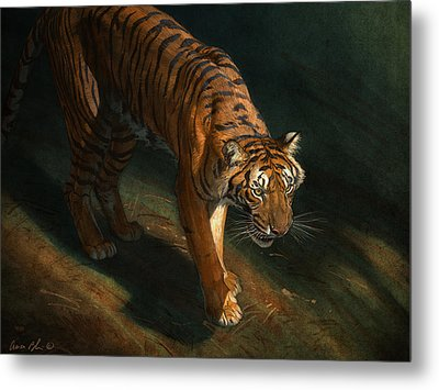 The Eye Of The Tiger Metal Print by Aaron Blaise