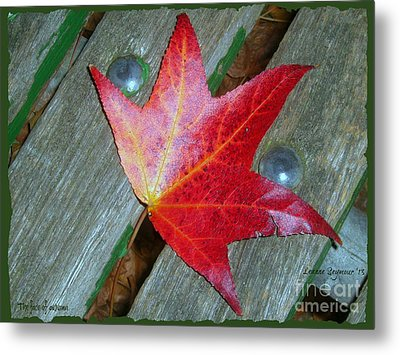 Metal Print featuring the photograph The Face Of Autumn by Leanne Seymour