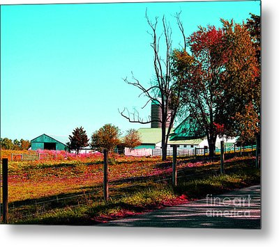 The Farmland In Autumn Metal Print by Tina M Wenger
