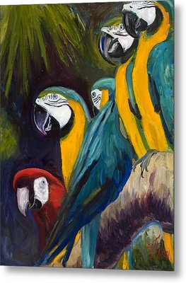 The Feisty One Metal Print by Billie Colson
