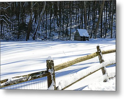 The Fence Line Metal Print by Paul Ward