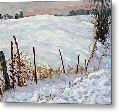 The Fence Line Metal Print by Phil Chadwick