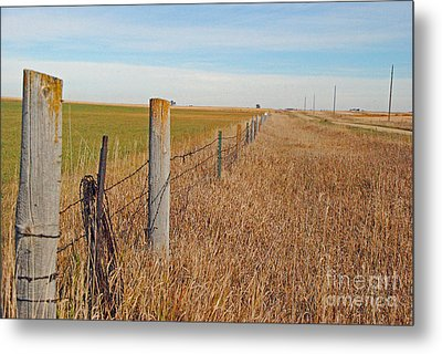 The Fence Row Metal Print by Mary Carol Story
