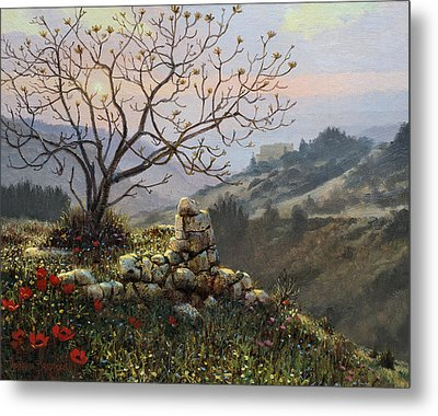 The Fig Tree   Mt Carmel Metal Print by Graham Braddock