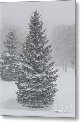 The First Snow Of Christmas Metal Print