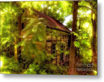 The Fixer-upper Metal Print by Lois Bryan