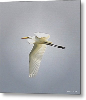 The Flight Of The Great Egret With The Stained Glass Look Metal Print