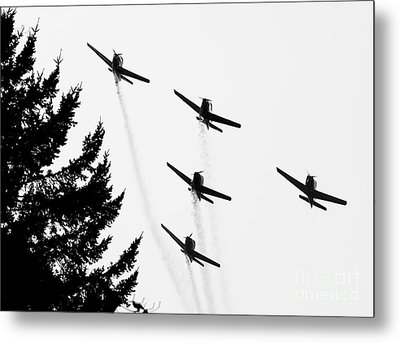 The Fly Past Metal Print