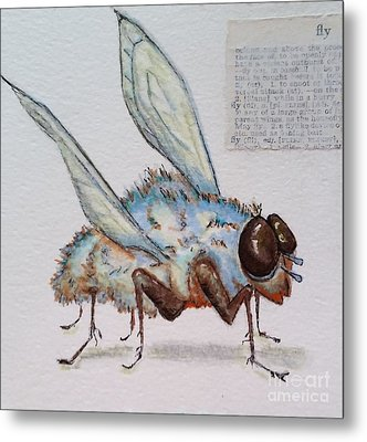 The Fly Metal Print by Vickie Scarlett-Fisher