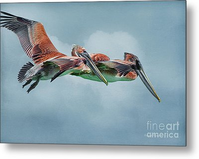 The Flying Pair Metal Print by Deborah Benoit