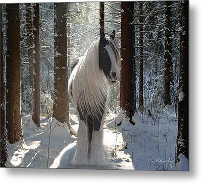 The Forest Beauty Metal Print by Terry Kirkland Cook