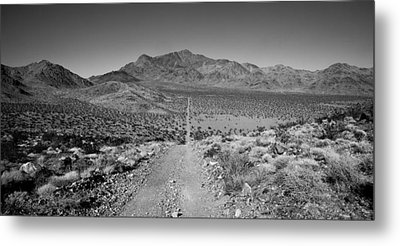 The Forever Road Metal Print