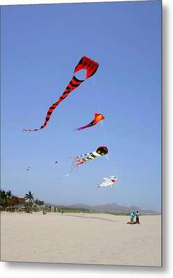 The Forgotten Joy Of Soaring Kites Metal Print by Christine Till