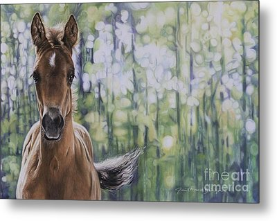 The Frilly Filly Metal Print by Joni Beinborn