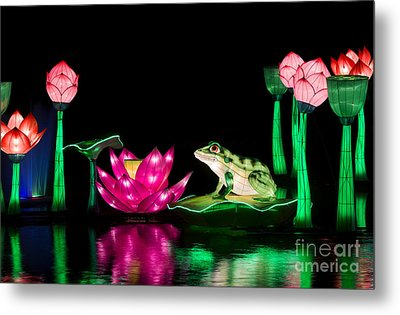 The Frog And Lotus Metal Print by Tim Gainey