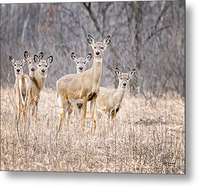The Gang Metal Print