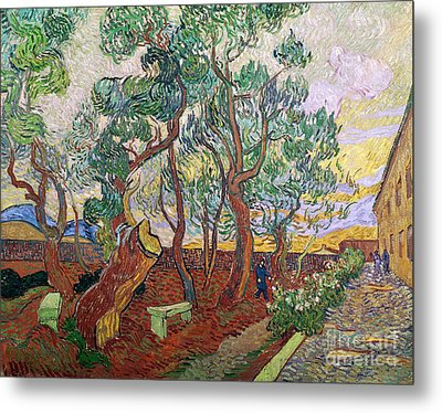The Garden Of St Pauls Hospital At St. Remy Metal Print by Vincent Van Gogh