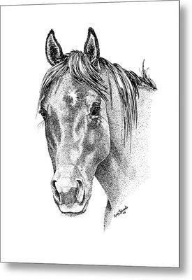 The Gentle Eye Horse Head Study Metal Print by Renee Forth-Fukumoto