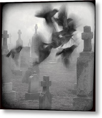 The Ghost Birds Metal Print by Gothicrow Images