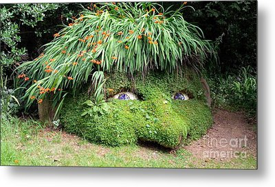 The Giant's Head Heligan Cornwall Metal Print