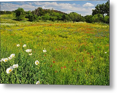 The Glory Of Spring Metal Print