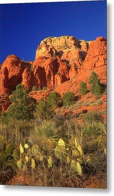 The Glory Of The Desert Red Rocks 1 Metal Print