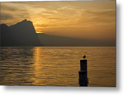 The Golden Hour Metal Print by Kim Andelkovic
