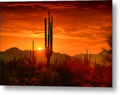 The Golden Southwest Skies  Metal Print by Saija  Lehtonen