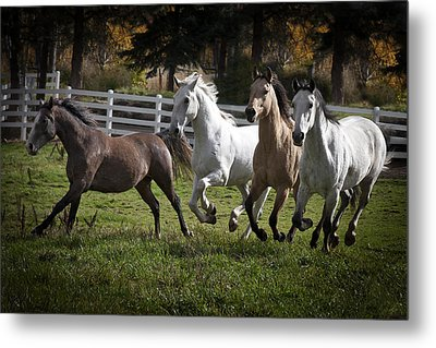 The Goldendale Four Metal Print by Wes and Dotty Weber