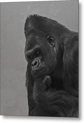The Gorilla Metal Print by Ernie Echols