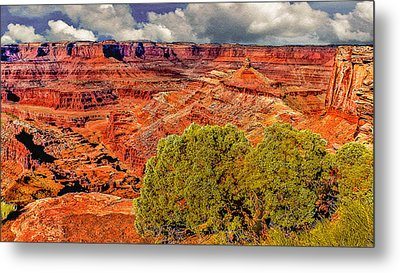 The Grand Canyon Dead Horse Point Metal Print by Bob and Nadine Johnston