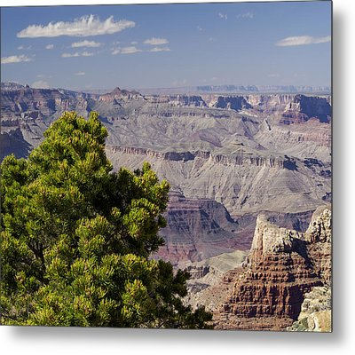 The Grand Canyon Metal Print by Marianne Campolongo