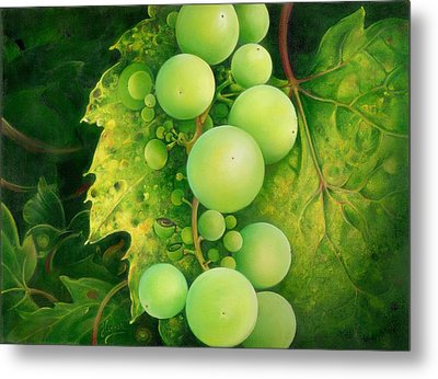 The Grapes Metal Print by Anna Ewa Miarczynska