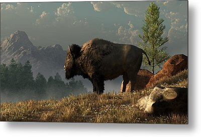 The Great American Bison Metal Print by Daniel Eskridge