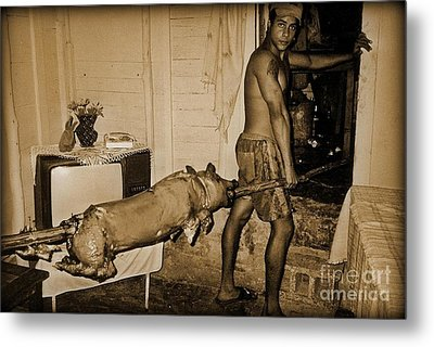 The Great Pig Out 1993 Metal Print by John Malone